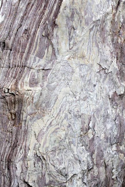 Vista do velho resistiu a superfície rochosa — Fotografia de Stock