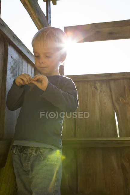 Little boy plaing in tree house — Stock Photo