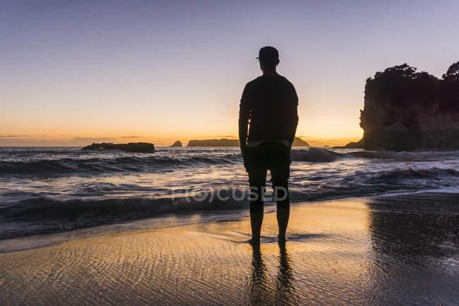 Nueva Zelanda, Wanganui, silueta del hombre de pie en la playa mirando al mar - foto de stock