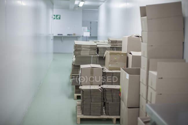 Упаковка коробок в лабораторных условиях — стоковое фото