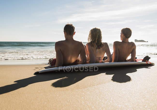 Visão traseira de amigos com prancha de surf no mar — Fotografia de Stock