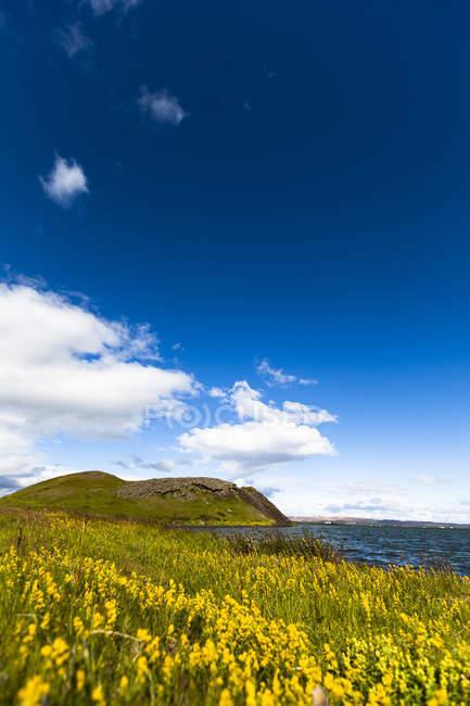 Iceland, Skutustadir, Krafla-volcanic area, Myvatn, pseudocrater  during dayitme — Stock Photo