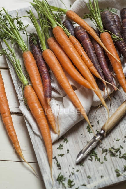 Different sorts of fresh carrots — Stock Photo