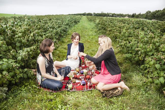Freundinnen picknicken zwischen Himbeerbüschen — Stockfoto