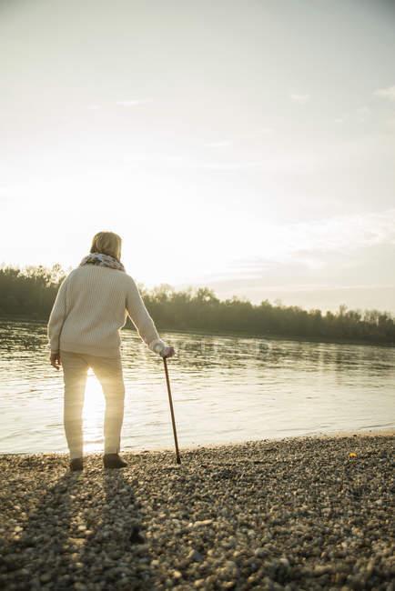 Старшая женщина с тростью, стоящей на берегу, наблюдая закат, вид сзади — стоковое фото