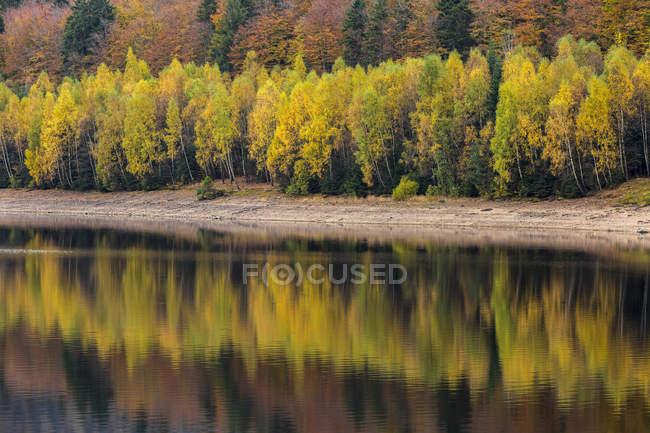 Germania, serbatoio di acqua potabile di Baviera, Parco nazionale della foresta bavarese, Frauenau in autunno — Foto stock
