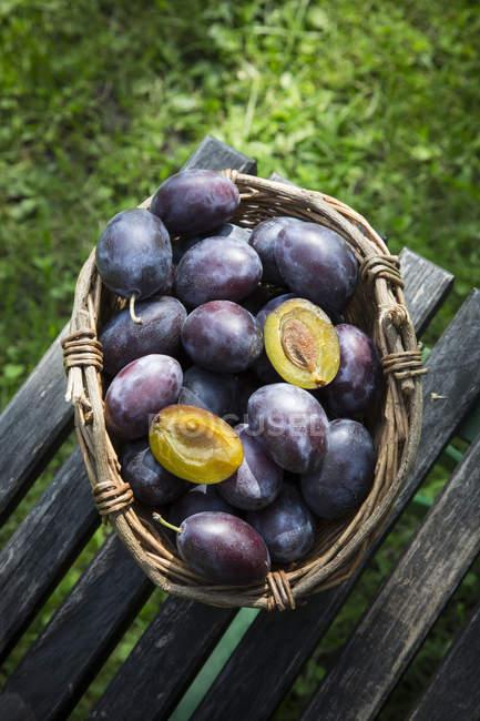 Cestino di vimini di prugne sulla presidenza di legno in giardino — Foto stock