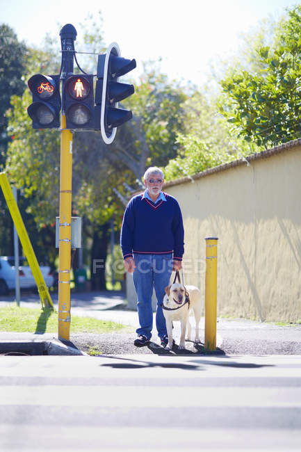 Blinden und sehbehinderten Mann mit seinem Blindenhund an Fußgänger Ampel warten — Stockfoto