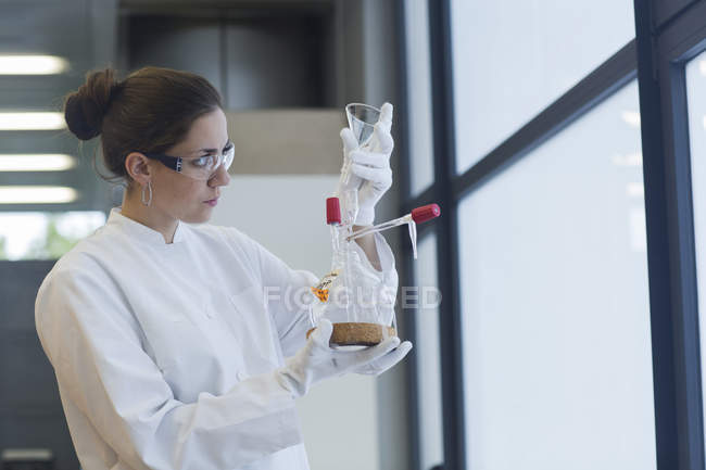 Young female scientist working in chemical lab — Stock Photo