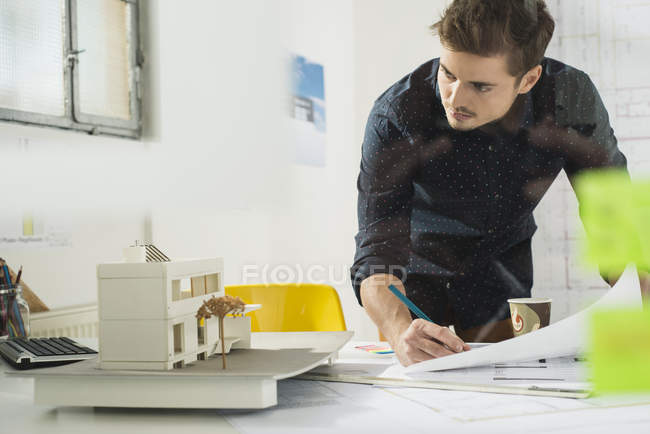 Young male architect working in office — Stock Photo