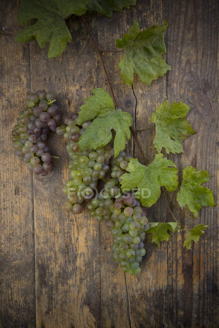 Grapes and vine leaves on dark wood — Stock Photo