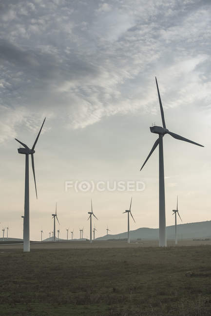 Spain, Andalusia, Tarifa, Wind farm at the field — Stock Photo