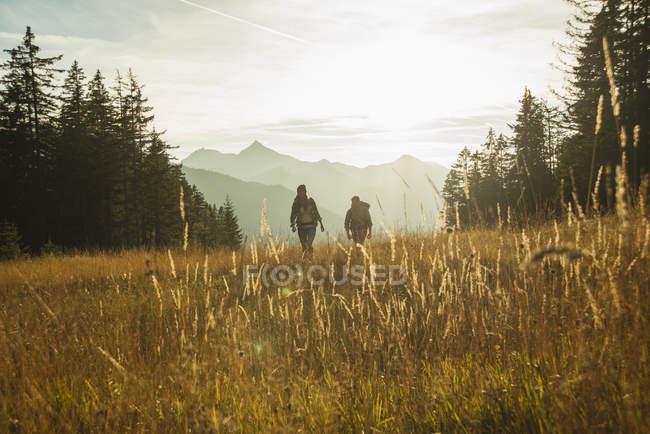 Österreich, Tirol, Tannheimer Tal, junges Paar wandert im Sonnenlicht auf der Alm — Stockfoto
