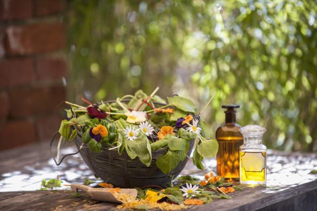 Surtido de hierbas medicinales en tazón de fuente en la tabla - foto de stock