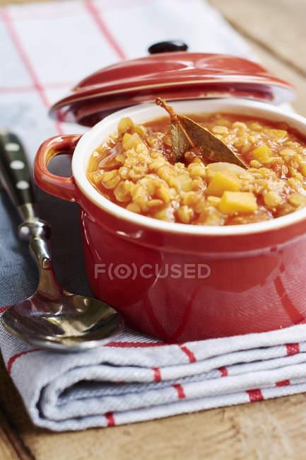 Горщик суп сочевиця червона і ложкою на кухонне рушник — стокове фото