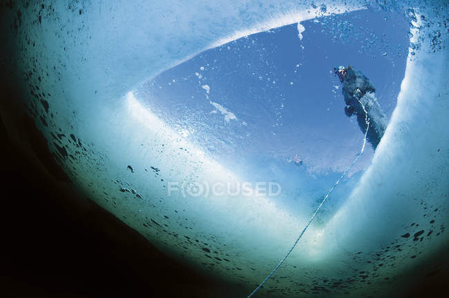 Male guide holding tether for ice diving — Stock Photo