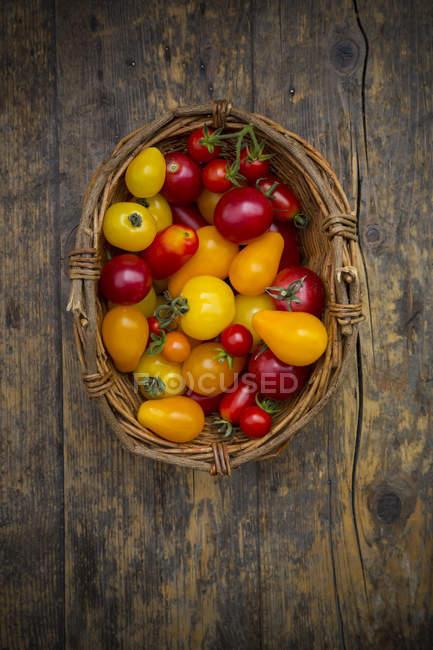 Корзина из различных органических Хеерлум помидоры на деревянный стол — стоковое фото