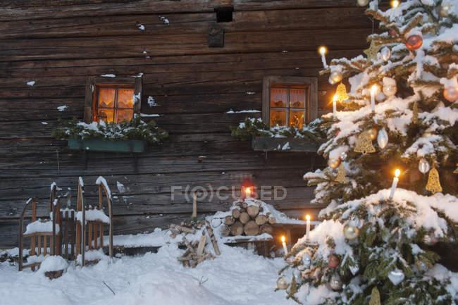 Fachada de cabaña de madera con árbol de Navidad iluminado en primer plano, Altenmarkt-Zauchensee, estado de Salzburgo, Austria - foto de stock