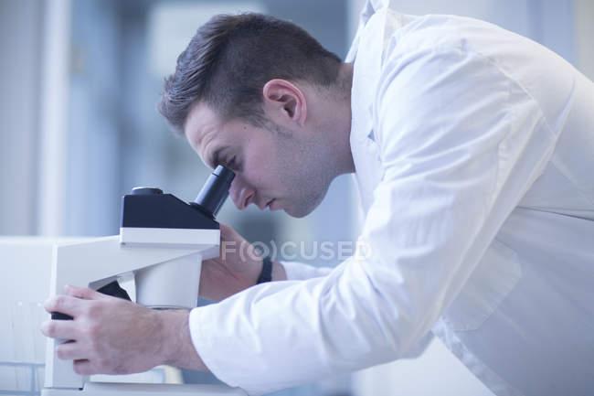 Ученый просматривает световой микроскоп в лаборатории — стоковое фото