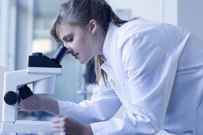 Giovane chimica femminile al microscopio in un laboratorio chimico — Foto stock