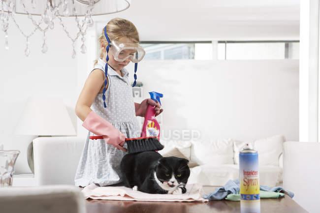 Девушка в очках для дайвинга убирает кошку на обеденном столе — стоковое фото
