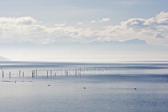 Германия, Бавария, верхней Баварии, Штарнберг, Штарнбергское озеро, Баварские Альпы и Цугшпитце в фоновом режиме — стоковое фото