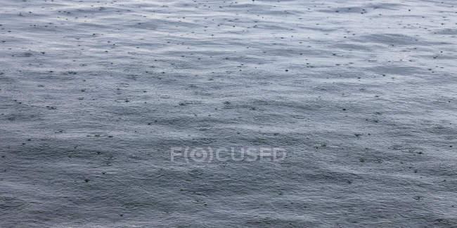 Eslovenia, Istria, Koper, gotas de lluvia en el mar Adriático - foto de stock