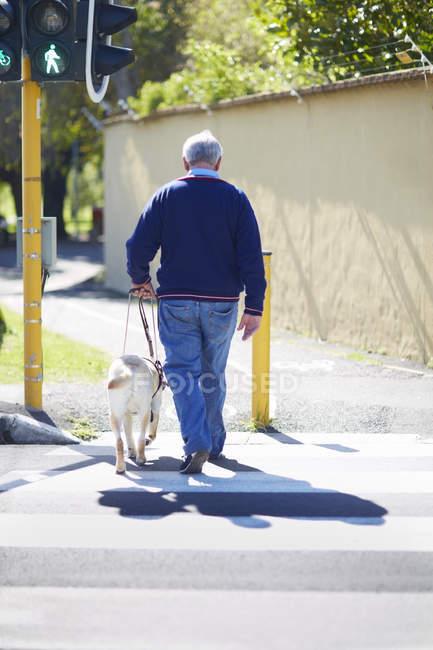 Blinden und sehbehinderten Menschen überqueren einer Straße mit seinem Blindenhund — Stockfoto