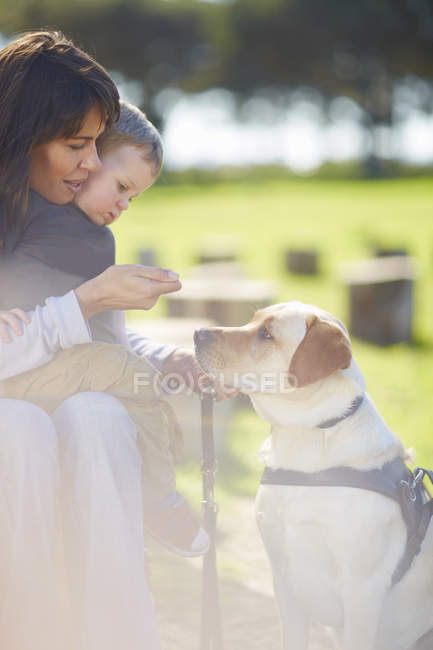 Mother and little son playing with dog outdoors — Stock Photo