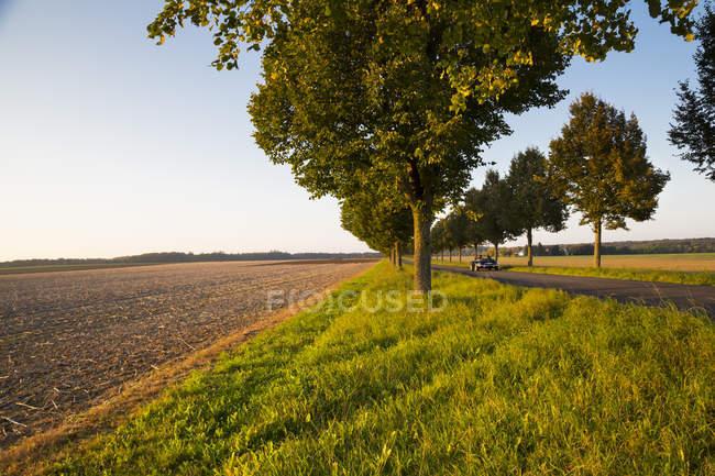 Німеччина, Баден-Вюртемберг, Einsiedel, переглянути збирання врожаю і дерев вздовж дороги з кабріолет на осінь — стокове фото
