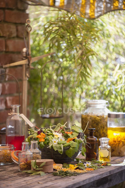 Assortment of medicinal herbs on wooden table — Stock Photo