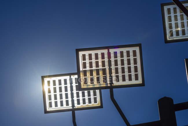 Германия, Ульм, солнечное дерево в жилом районе Ulmer солнечный город — стоковое фото