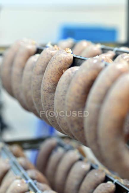 Сирих ковбас на стійку до лікування — стокове фото