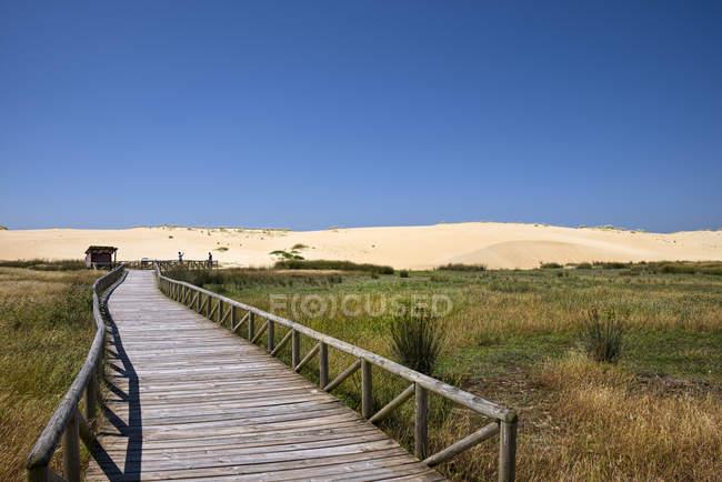 Іспанія, Галичини, провінція A Корунья, Corrubedo, блукаючих Dune, дюни Corrubedo природного парку — стокове фото