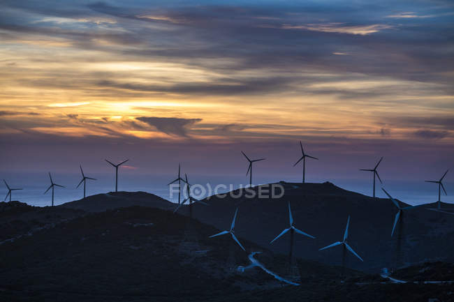 Scenic view of wind farm in evening light, Tarifa, Andalusia, Spain — Stock Photo
