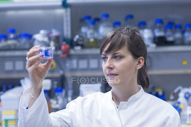 Female natural scientist working in biological laboratory — Stock Photo