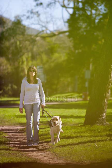 Femme malvoyante marchant avec un chien-guide dans un parc — Photo de stock