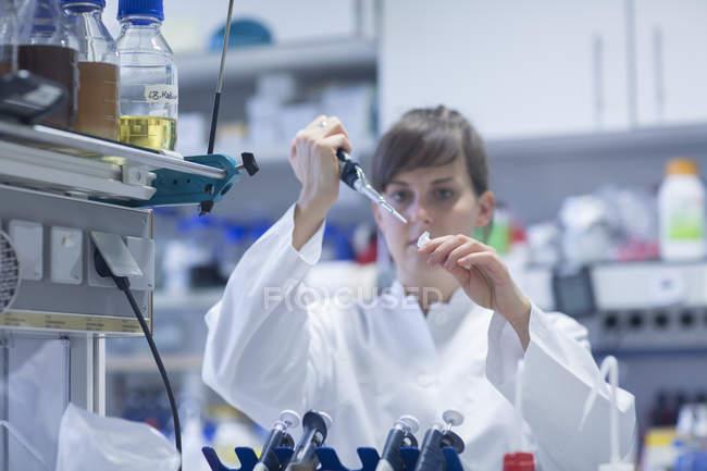 Молодая женщина-естествоиспытатель работает в биологической лаборатории — стоковое фото