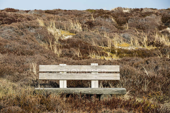 Германия, Шлезвиг-Гольштейн, Зильт, скамейке в дюны в дневное время — стоковое фото