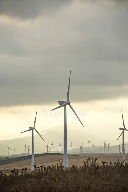 Испания, Андалусия, Фауфа, Ветряная ферма на высохших холмах — стоковое фото