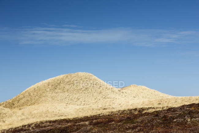Germany, Schleswig-Holstein, Sylt, dune landscape during daytime — Stock Photo