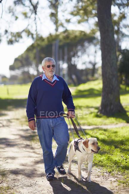 Homme malvoyant marchant avec son chien-guide dans un parc — Photo de stock