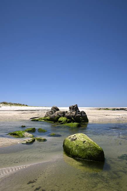 Espanha, Galiza, vew de maré baixa de água e pedras no musgo — Fotografia de Stock