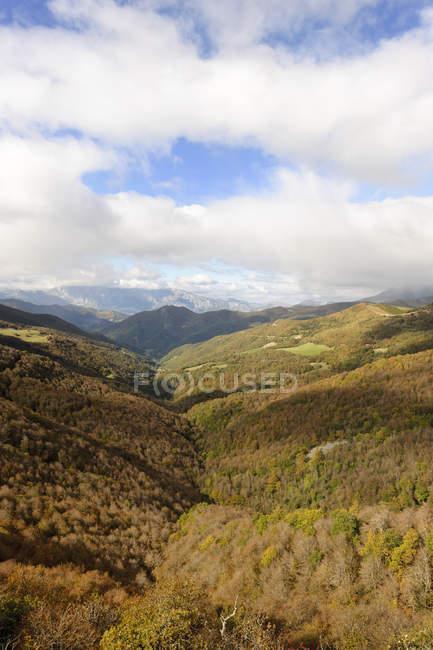 Parco nazionale Picos de Europa, veduta del campo di erba verde sotto le nuvole — Foto stock