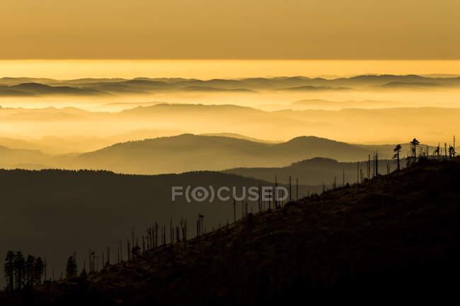 Германия, Бавария, национального парка Баварский лес, вид из большое Arber с дуновение туман на закате — стоковое фото