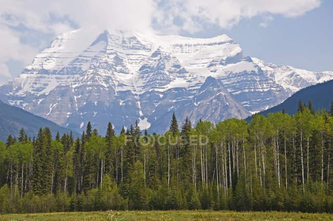 Canadá, Columbia Británica, Montañas Rocosas, Mount Robson, Mount Robson Provincial Park - foto de stock