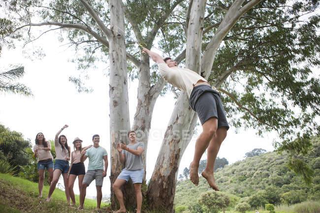 Группа друзей аплодирует, пока человек качается на дереве — стоковое фото