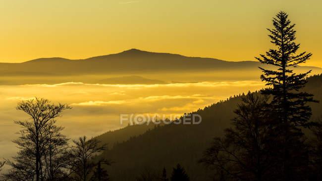 Vista panoramica dalla valle con soffio di nebbia all'alba, Parco nazionale della foresta bavarese, Baviera, Germania — Foto stock