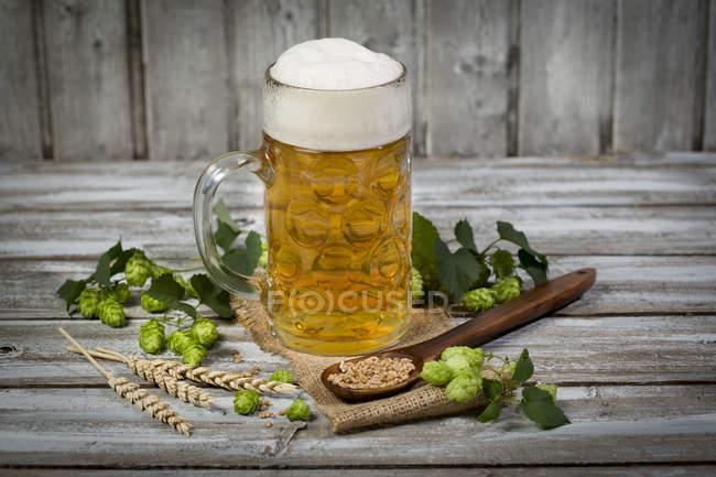 amatuer-closeup-beer-pics-horny