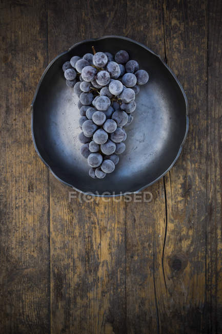 Bowl of deep frozen blue grapes on wood — Stock Photo